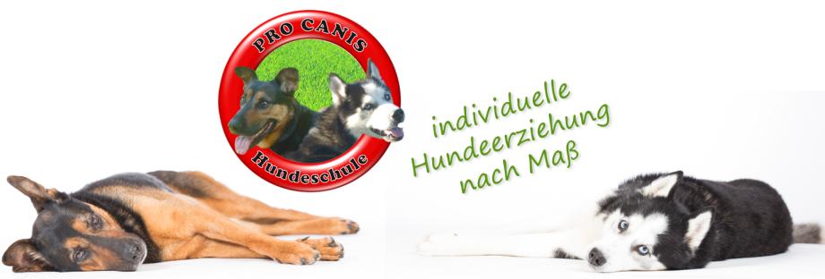 Hundeschule Pro Canis Münster Titelbild